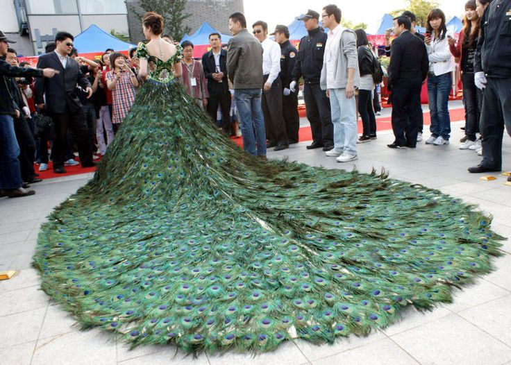 Peacock Wedding Dress